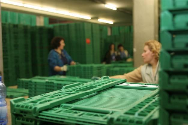 Bei der Rekrutierung von Schweizer Arbeitssuchenden stellte sich heraus, dass für die RAV-Aktion nur gerade jeder zehnte infrage kam. Foto: Sven Broder