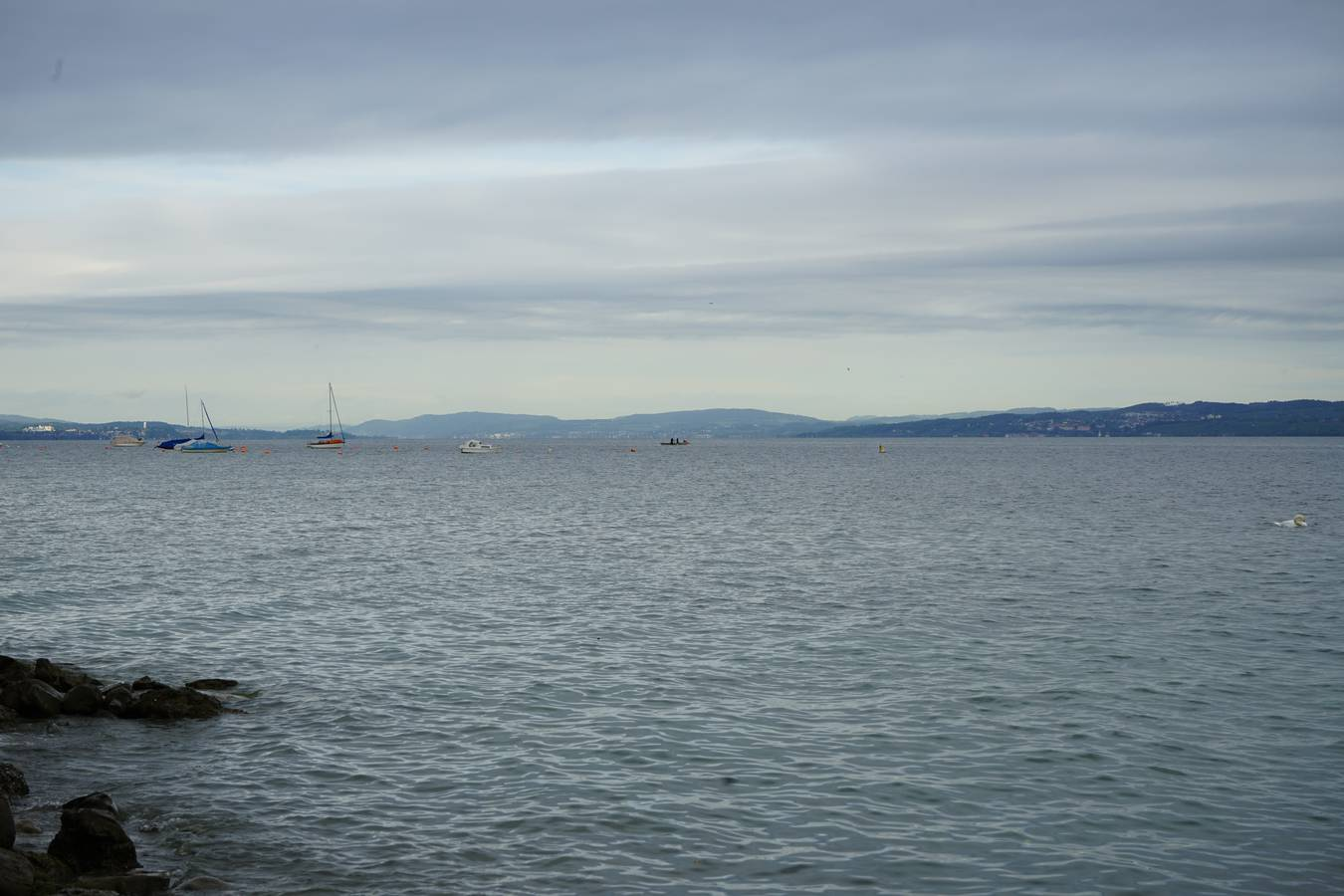 Rund 200 Meter vom heutigen Ufer entfernt liegen die Steinhügel. (© FM1Today)