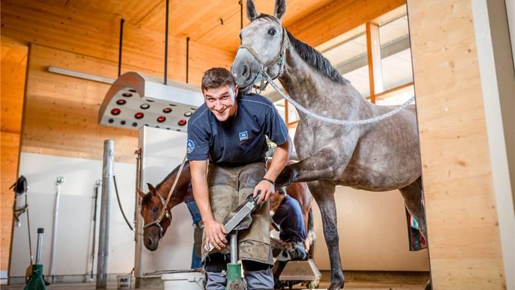 Daniel Oetiker weiss, wie man mit Pferden umgehen muss. In Bern misst er sich mit anderen Hufschmieden.Sandra Ardizzone