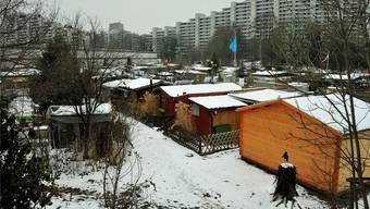 In 10 bis 15 Jahren müssen die Schrebergärten zwischen Neumattstrasse und Sängelbach der ARA-Erweiterung weichen