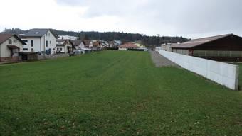 Bald könnte auf der Wiese am Heimatweg dreistöckig gebaut werden.