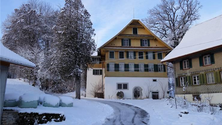 Zur stattlichen ehemaligen Mühle gehören auch eine Sägerei, Nebenbauten und ein grosser Fischweiher.