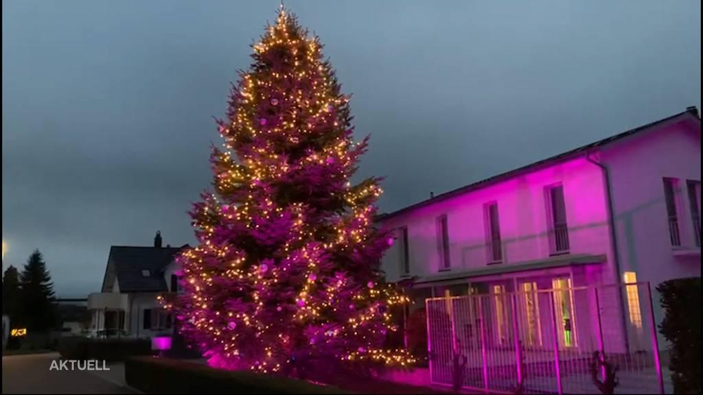 Weihnachten im Garten: Daniel Barrer feiert mit einem Tannenbaum des Nachbarn