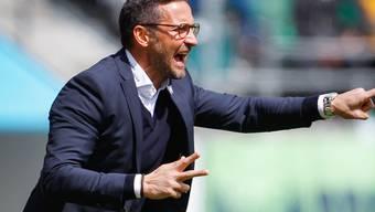St. Gallens Trainer Joe Zinnbauer ist manchmal am Verzweifeln