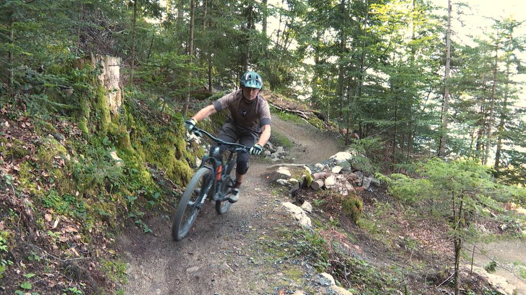 Angst vor Einschränkungen: Mountainbiker fürchten sich vor Jagdgesetz