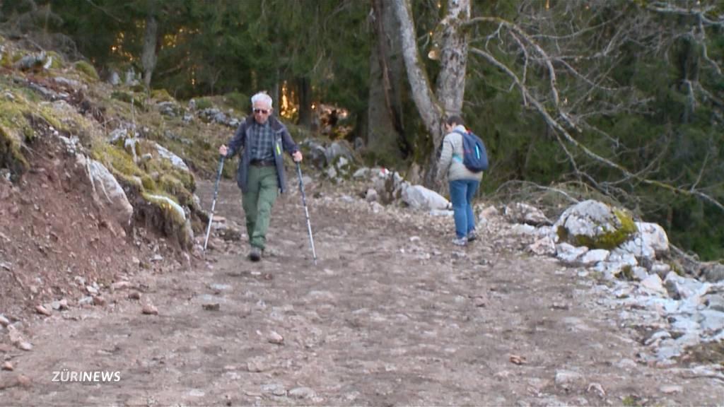 Wanderweg im Kanton Schwyz illegal zu einer Strasse umgebaut