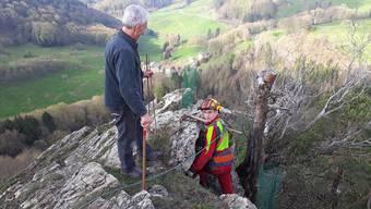 Peter Roth (l.), Vater des Landbesitzers Beat Roth, und Sebastian Selinger, Lernender beim Forstbetrieb Jura, pflanzen die jungen Föhren neben dem alten Stumpf.