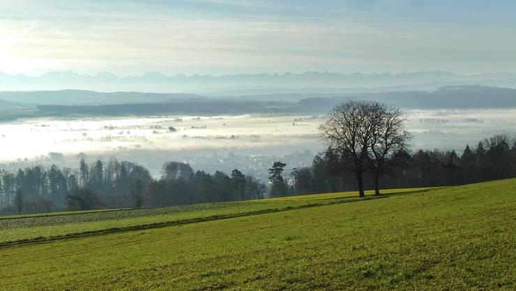 Mystische Nebelschwaden in Grenchen
