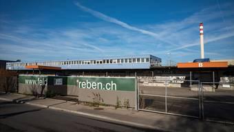 Auf dem Gelände der ehemaligen Deponie Feldreben sollen ab August bis zu 500 Asylsuchende untergebracht werden. (Archiv)