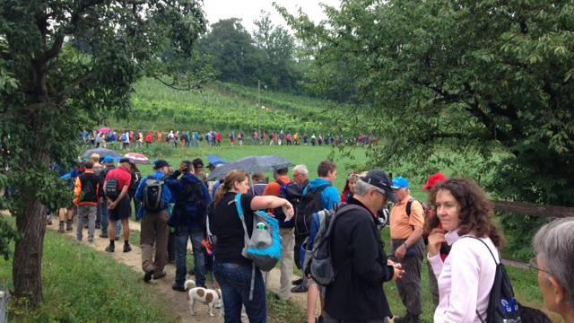 Gut möglich, dass die ersten Wanderer im Kloster Fahr ankommen, während die letzten in Killwangen gerade loslaufen.