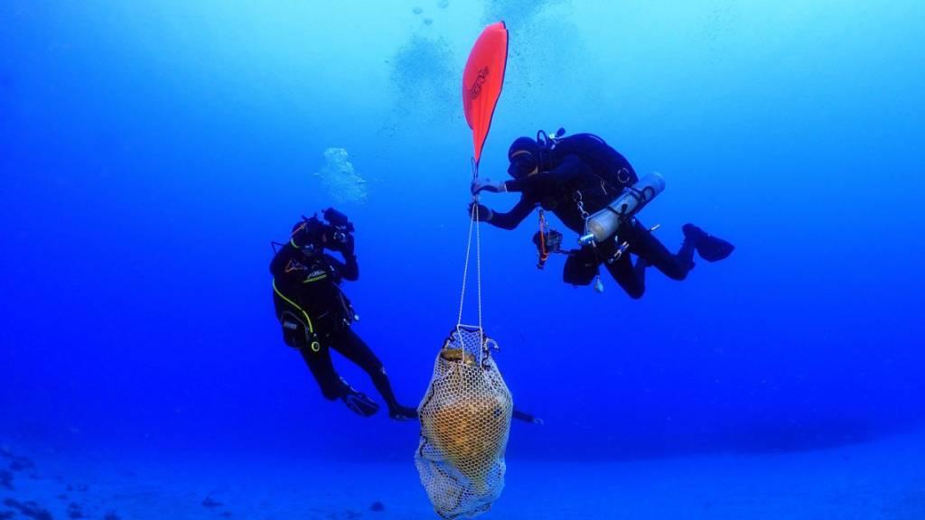 Amphoren aus der Antike in Schiffswrack vor Kasos entdeckt