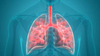 Atmen ist unser dringendstes Bedürfnis: Entsteht dort eine Entzündung, wird es schnell lebensgefährlich.