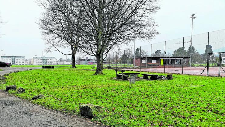Bei den Tennisplätzen soll ein attraktiver Spielplatz entstehen. Der jährliche Unterhalt wird rund 6500 Franken kosten.
