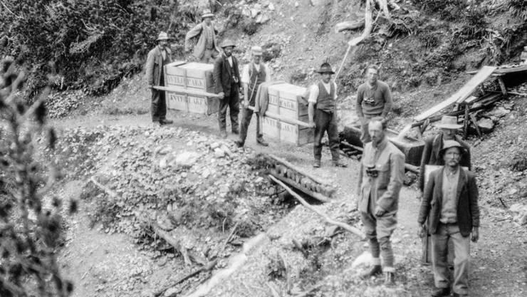 Ein Bild aus den frühen 1920er Jahren vom Transport junger Steinböcke in die Val Cluozza im Schweizerischen Nationalpark.