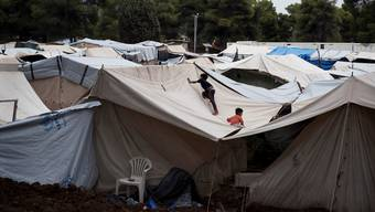 Prekäre Zustände in griechischen Flüchtlingslagern: Hier Ritsona, nördlich von Athen.