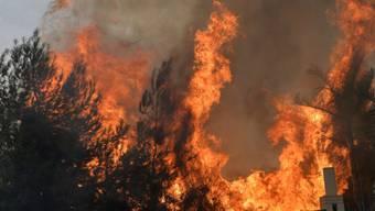 Waldbrand in der Region Mechref südlich der libanesischen Hauptstadt Beirut.