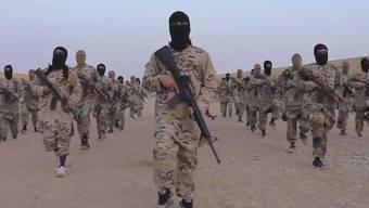 Es wird davon ausgegangen, dass in den letzten Jahren 1800 Franzosen in den Dschihad in Syrien und Irak gezogen sind. (Symbolbild)