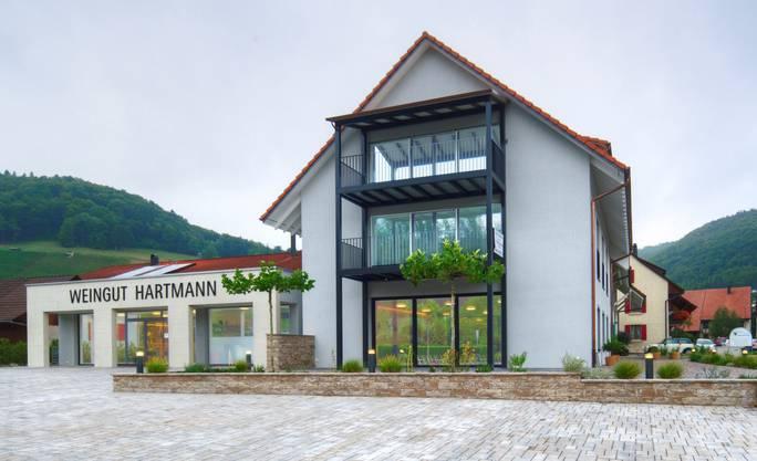 Vor 33 Jahren gründeten Bruno und Ruth Hartmann ihr Weinbauunternehmen. Aus 16 Hektaren Reben keltern Hartmanns 22 Rot- und Weissweine sowie Spezialitäten. Die Reben wachsen an Jura-Südhängen, in der Nähe des ehemaligen Legionslagers Vindonissa, in das die Römer vor 2000 Jahren die Weinkultur gebracht hatten. Auch die 10 nebenberuflichen Winzer in Remigen bringen ihre Ernte zu Hartmanns. Die Betriebsphilosophie ist auf Nachhaltigkeit ausgerichtet: Es wird auf pilzwiderstandsfähige Sorten Vidal blanc, Regent und Cabernet Jura gesetzt. Diese brauchen praktisch keine Pflanzenschutzmittel. Neu kommt in diesem Frühling die vor 34 Jahren gezüchtete, Botrytis-resistente Sorte Souvignier gris dazu. Sie wurde in der Schweiz bisher erst wenig und im Aargau noch gar nicht angebaut. Die fleischigen Traubenbeeren ergeben einen kräftig-stoffigen Weisswein – 2018 wird die erste Ernte erwartet.