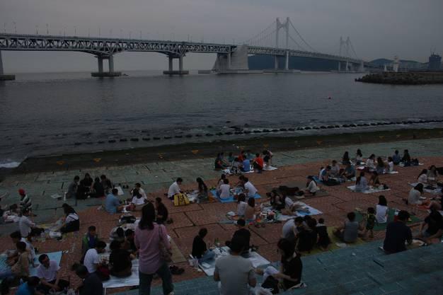 Die Einwohner von Busan beim abendlichen Picknick direkt am Meer