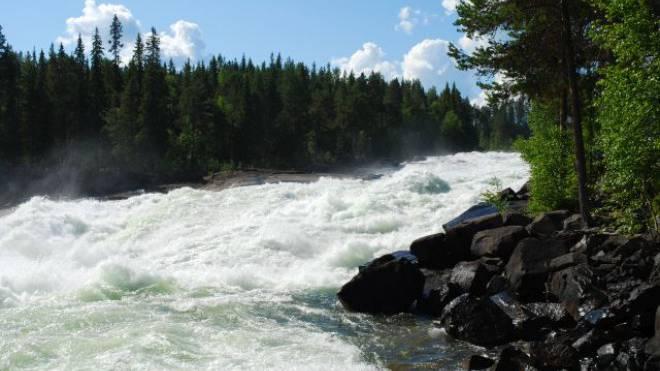 Bei den Storforsen-Stromschnellen fliessen etwa 250 m³ Wasser pro Sekunde talwärts. Foto: Silvio Burger