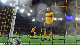 YB stolperte in den Champions-League-Playoffs über Belgrad – können Fabian Lustenberger und Co. in der Europa League punkten?