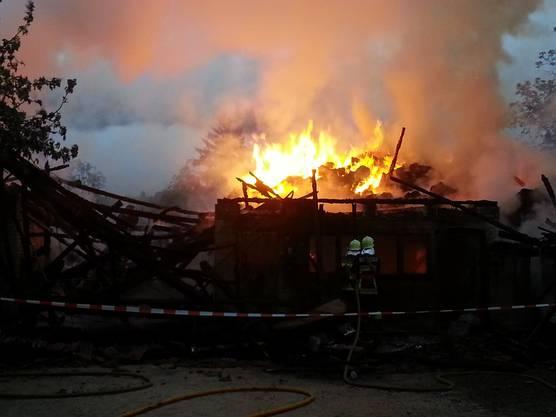Vier Bewohner wurden zur Kontrolle ins Spital gebracht.