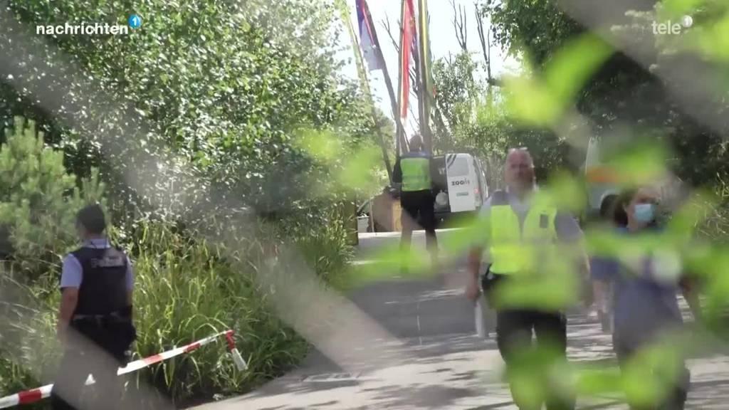 Tierpflegerin stirbt im Zoo Zürich nach Tiger-Attacke