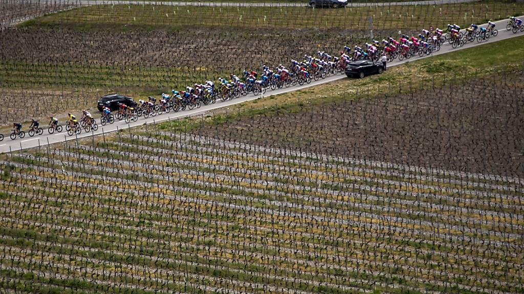 Sagan gewinnt 1. Etappe im Sprint - Dennis behält Leadertrikot