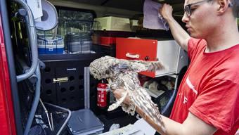Unterwegs mit dem Tierrettungsdienst