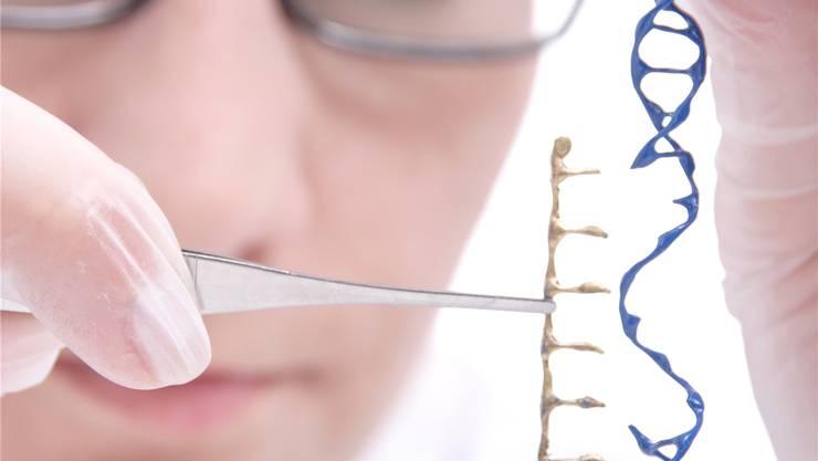Nicht nur im Labor: Auch in der Natur kommen kleinere genetische Veränderungen der DNA laufend vor.Shutterstock
