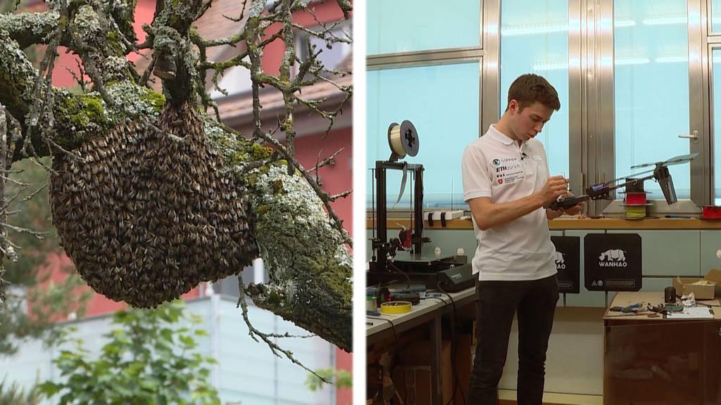 Bienenschwärme in der Stadt Zürich / ETH präsentiert tauchendes Flugzeug