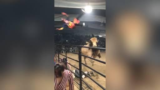 Stier schmeisst Cowboy in hohem Bogen aus der Rodeo-Arena