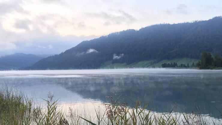 Der Herbst hält Einzug, der Ägerisee «dampft». (Leserbild: René Ulrich, Unterägeri, 20. September 2019)