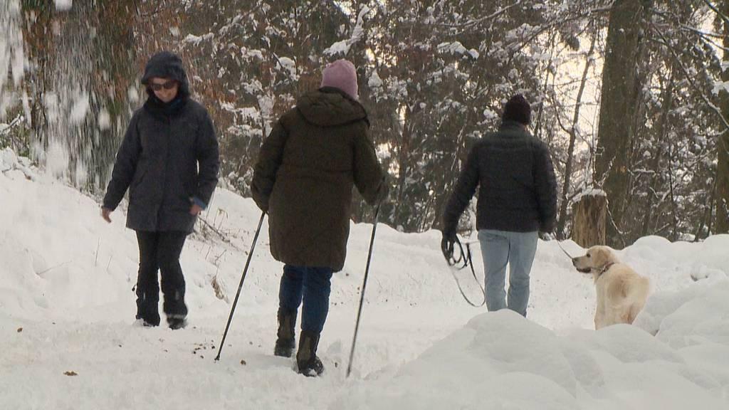 Hohe Lawinengefahr nach erneuten Schneefällen