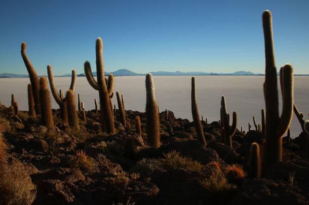 Der Salar de Uyuni ist mit mehr als 10'000 Quadratkilometern, rund ein Viertel der Schweiz, die grösste Salzpfanne der Welt.