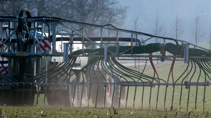 Bauern werden effizienter düngen müssen, folgert eine Studie des Bundes.
