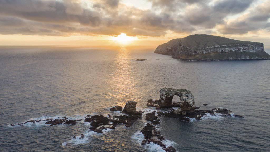 Die Behörden auf den Galápagos-Inseln haben ein Verbot von Feuerwerk erlassen, um die einzigartige Naturwelt der Region zu schützen. (Archivbild)
