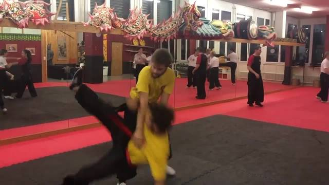 Swiss Chinese Kung Fu School Urdorf