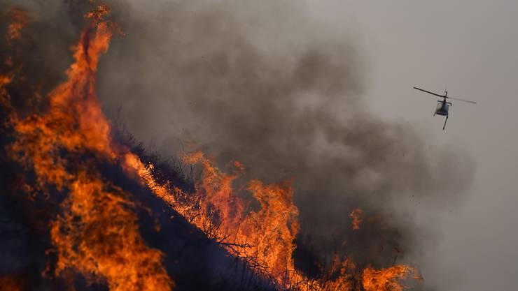 Ein Lösch-Hubschrauber ist beim Blue Ridge Fire im Einsatz. Foto: Jae C. Hong/AP/dpa
