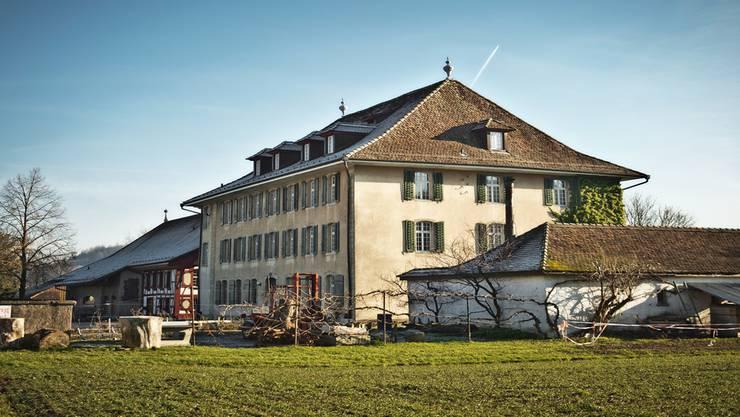 Auch im neuen Jahr steht die Rudolf-Steiner-Schule Aargau weiterhin im Blickpunkt.Annika Bütschi