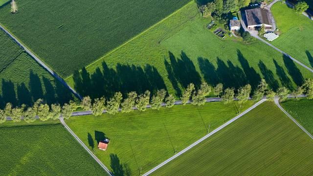 Aus der Vogelperspektive: Ein Bauernhof im Rheintal (Symbolbild)