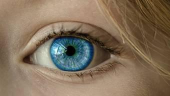 Blaue Augen sind gegenüber dunklen rezessiv. Menschliche Augen sind (dunkel)braun.