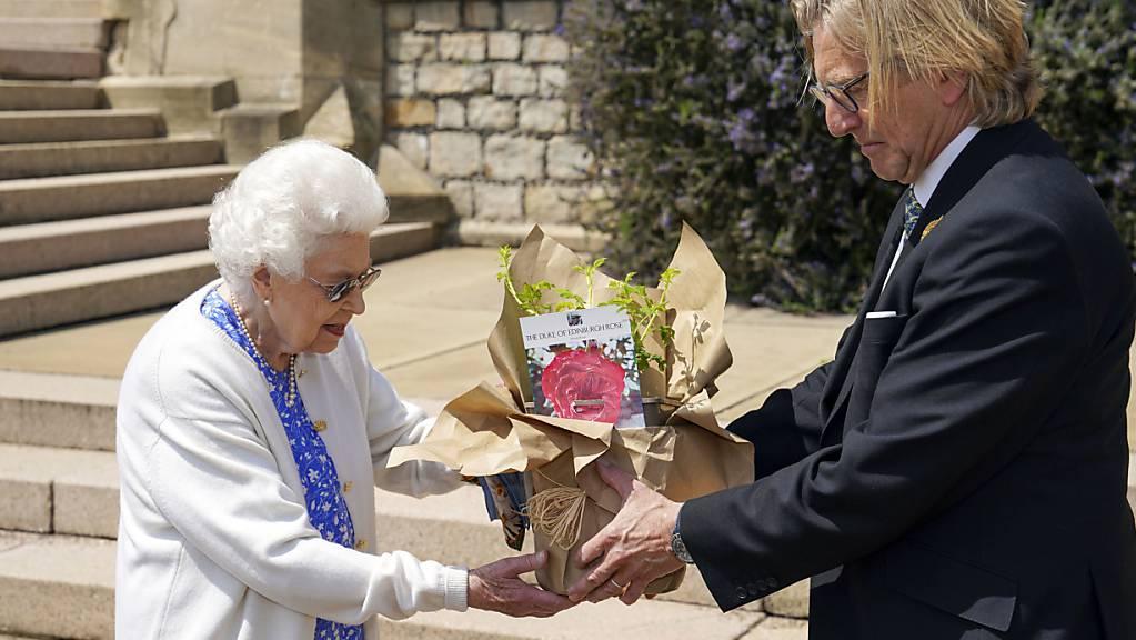 Die britische Königin Queen Elizabeth II. hat zu Ehren ihres verstorbenen Mannes Prinz Philip eine Rose gepflanzt. Prinz Philip wäre am Donnerstag 100 Jahre alt geworden.