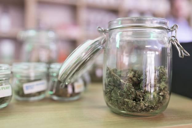 «Beim Cannabis könnte die Schweiz problemlos autark produzieren, schon jetzt stammt mehr als 50 Prozent der konsumierten Menge aus einheimischer Produktion.»