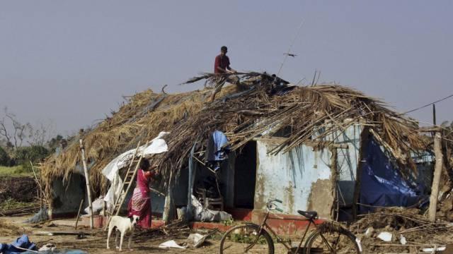 """Bewohner des Bundesstaats Odisha reparieren nach """"Phailin"""" ihr Haus"""