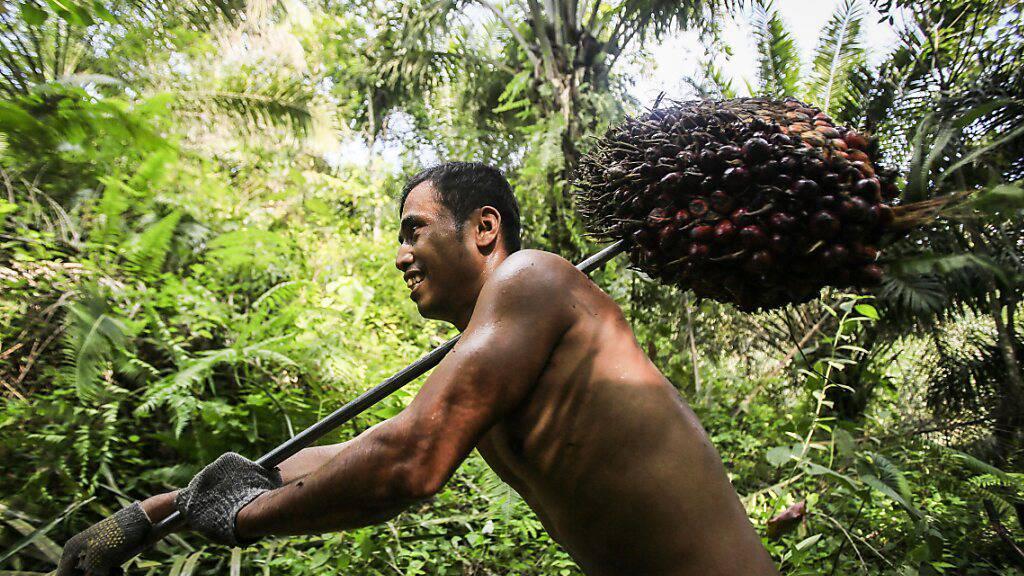 Stimmende heissen Freihandelsabkommen mit Indonesien gut