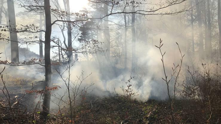 Zum Beispiel Balsthal: Hier ist wegen Trockenheit ein Stück Wald in Brand geraten, das aber rasch gelöscht werden konnte.