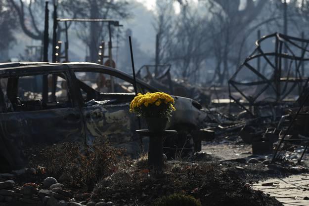 Ein frischer Blumenstraus wurde zum Gedenken in ein völlig zerstörtes Wohnviertel in Santa Rosa gestellt