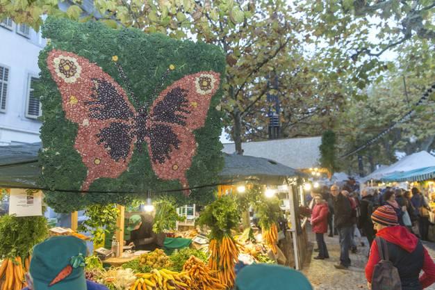 Gelandet! Der Rüebli-Schmetterling aus dem Hause Furrer (Schongau LU)