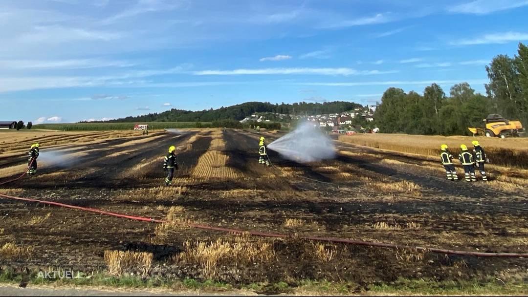 Feldbrand Sarmenstorf: Feuerwehr und Landwirt verhindern Schlimmeres